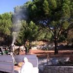 Fumigacion de bosques