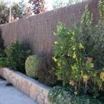 Mantenimiento de Jardines Jardineria Alcobendas