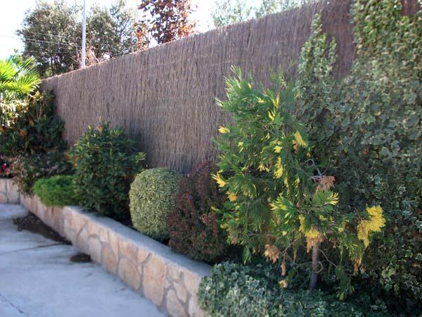 Mantenimiento de jardines jardineria alcobendas ricotrebol for Mantenimiento de jardines