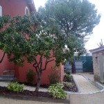 Mantenimiento de Jardines Jardineria Aranjuez
