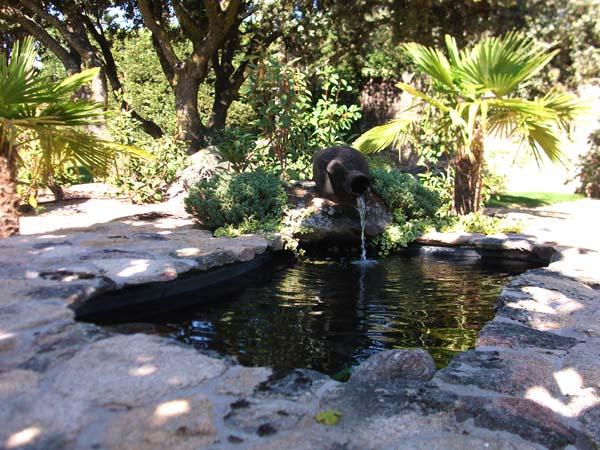 Mantenimiento de Jardines Jardineria Aravaca