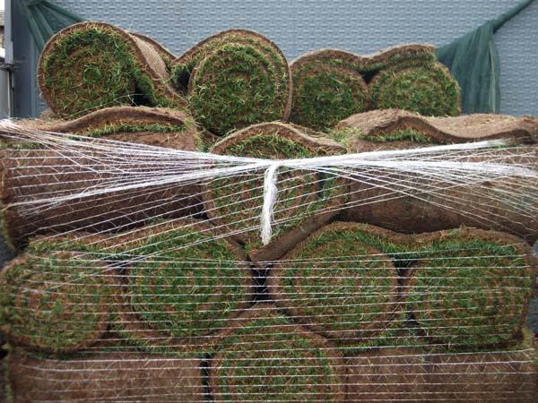 Mantenimiento de Jardines Jardineria Buitrago del Lozoya