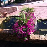 Mantenimiento de Jardines Jardineria Griñon