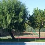 Mantenimiento de Jardines Jardineria Guadalajara