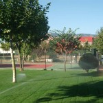 Mantenimiento de Jardines Jardineria Las Rozas de Madrid