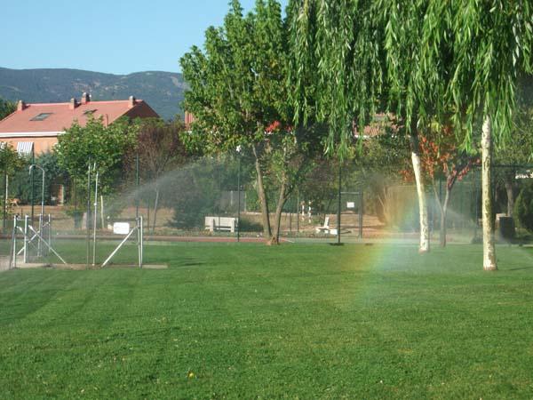 Mantenimiento de jardines jardineria madrid ricotrebol for Mantenimiento de jardines