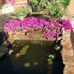 Mantenimiento de Jardines Jardineria Parla