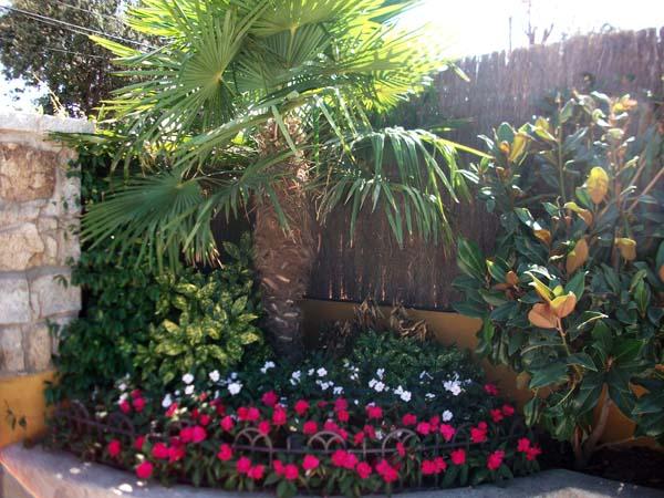 Mantenimiento de Jardines Jardineria San Sebastian de los Reyes