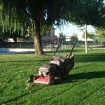 Mantenimiento de Jardines Jardineria Sierra de Guadarrama