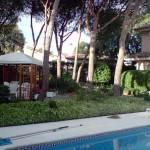 Mantenimiento de Jardines Jardineria Torrejon de Ardoz