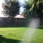 Mantenimiento de Jardines Jardineria Torrelodones