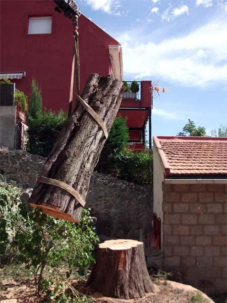 Mantenimiento de Jardines Jardineria Valdemorillo