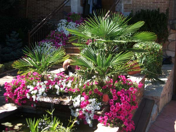Decoracion de Jardines en Madrid
