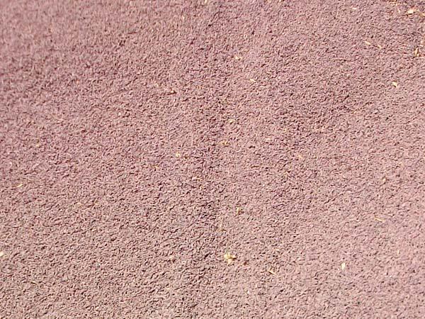 Piedra Volcanica para Jardin