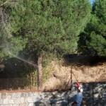 Jardineros en El Molar