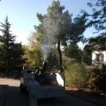 Jardineros en Hoyo de Manzanares