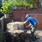 Jardineros en Sierra de Madrid