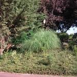 Jardineros en Torrelodones